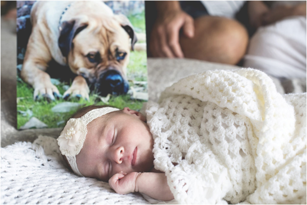 Angie Duncan Photography, Camden Newborn Photography